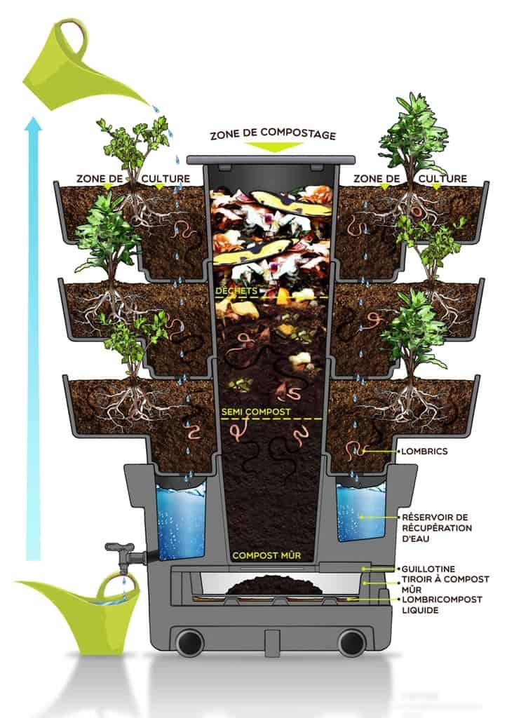 Les vers de compost le lombricompostage vertibio - Taux d humidite dans une chambre de bebe ...