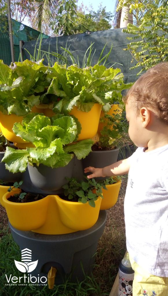 Jardin_composteur_permaculture_recyclage_fleur_decoration